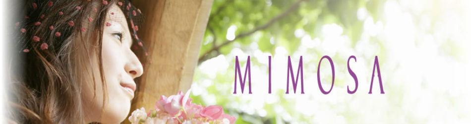 長崎でおすすめの結婚相談所ランキング:マリッジサポートミモザ
