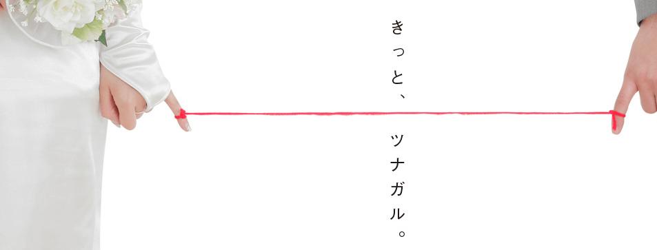 福井の結婚相談所おすすめランキング;Ai support