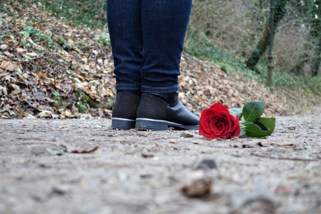 red-rose-on-the-floor-3007761_1920