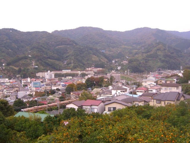 和歌山の結婚相談所を選ぶ時の4つのポイント