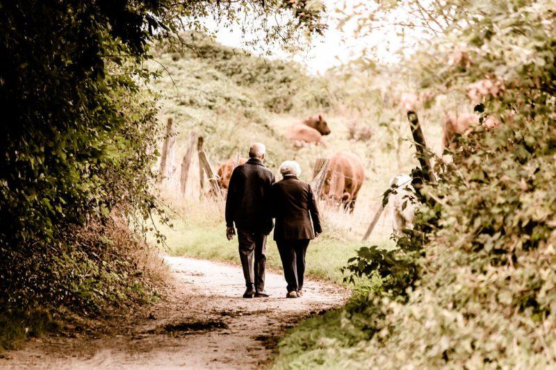 60代やシニア世代に結婚相談所が人気の理由3つ